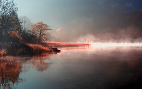 coast, morning, mist, river, nature