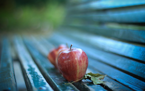 macro, delicious, leaf, apples, autumn