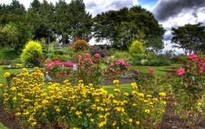 Ванкувер, Канада, природа, Queen Elizabeth Garden