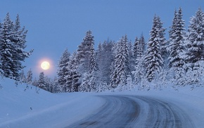 road, moon, trees, snow, winter