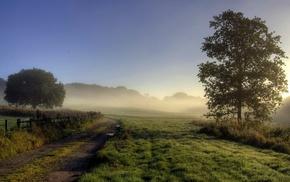 landscape, mist, nature