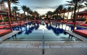 swimming pool, palm trees