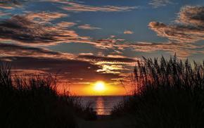 evening, orange, nature, river, sunset