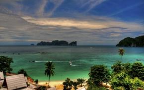 Тропики, природа, пальмы, океан, берег, скалы