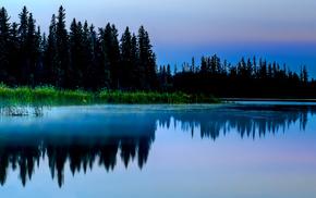 природа, вечер, лес, озеро, болото