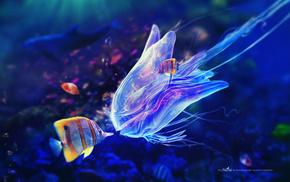 stunner, azure, underwater, bubbles