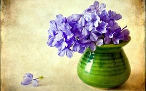 vase, flower, flowers, purple