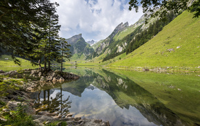 lake, Alps, nature, mountain, forest