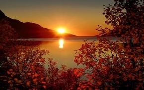 sky, mountain, sunset, twigs, rays