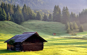 forest, grass, mountain, lodge, nature