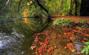 autumn, river, tree, foliage