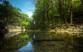 river, nature, forest, summer