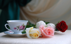 roses, cup, flowers, still life, holiday