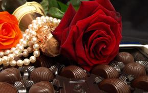 rose, stunner, love, mood, flower