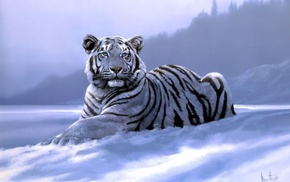 tiger, art, animals