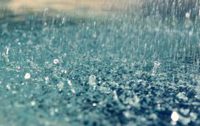 Rain, drops, дождь, капли, макро