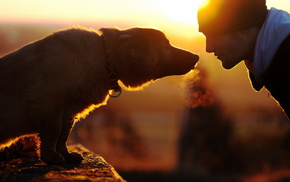 mood, dog, men, love
