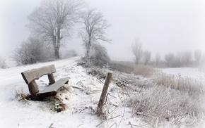 mist, winter, snow