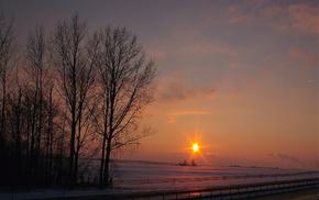 sky, evening, nature, Sun, rays