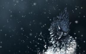 3D, feathers, bird, art