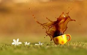 tea, drink, coffee, cup, macro