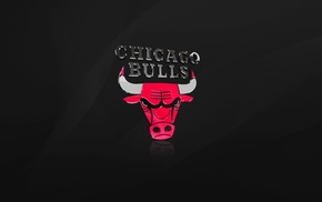 black, sports, NBA, basketball, Chicago