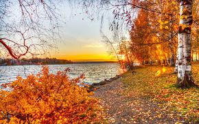 leaves, lake, sunset, nature, autumn