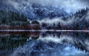 nature, mist, winter, lake, snow