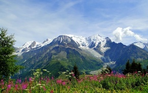 mountain, grassland, nature, Alps