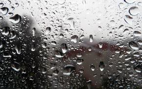 macro, rain, drops