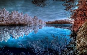 лес, водоём, гладь, природа, пруд, Озеро