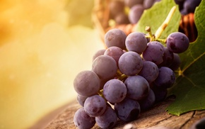 Виноград, вкусно, листья, свет