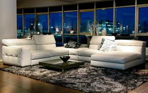 interior, room, white, couch, design