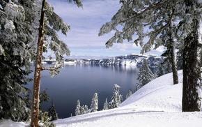 холмы, Зима, лес, природа, деревья, снег