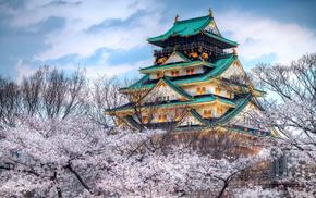 sakura, Japan, spring, sky, city