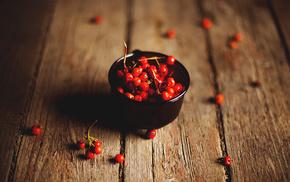 berries, macro