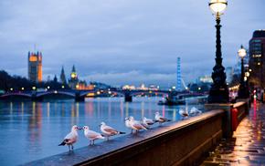 street, cities, England, river, light