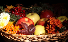 apples, fruits, autumn, flowers, leaves