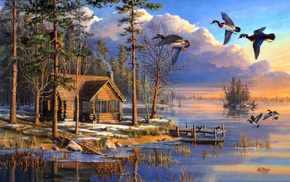 house, ducks, sunrise, flying, lake, животные