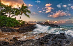 nature, surf, clouds, stones, palm trees