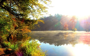 autumn, Sun, river, forest, nature