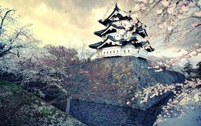 Japan, sakura, city, cities, spring