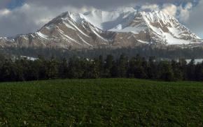 glade, mountain, nature, 3D, grass