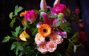 flowers, roses, bouquet, leaves