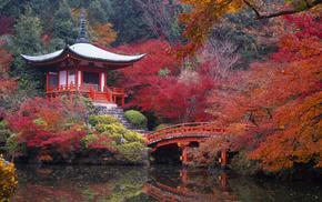 autumn, Japan, stunner