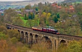 пути, железная дорога, Паровоз, деревья, жд, вагоны