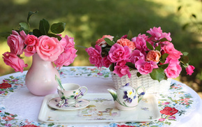 cup, roses, flowers