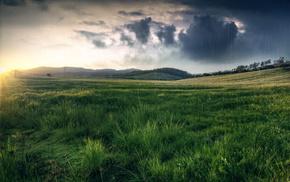 hills, rain, grassland, field, nature