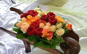 flowers, bouquet, yellow, roses, red