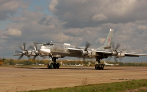 bear, aircraft